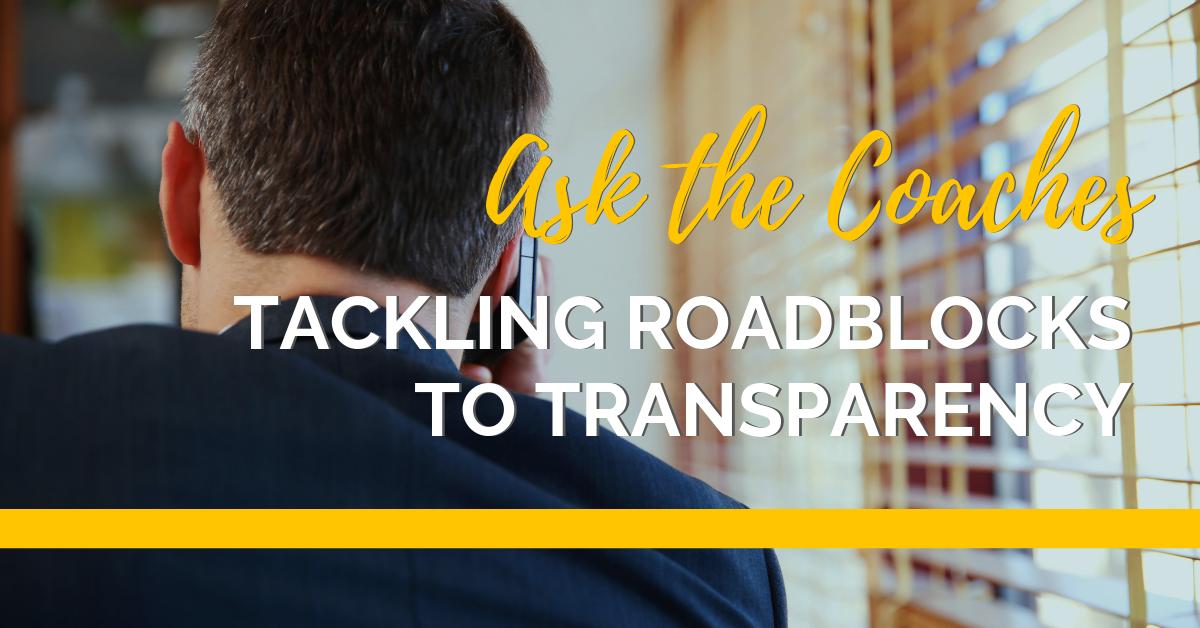 Roadblocks to transparency-sized (3)