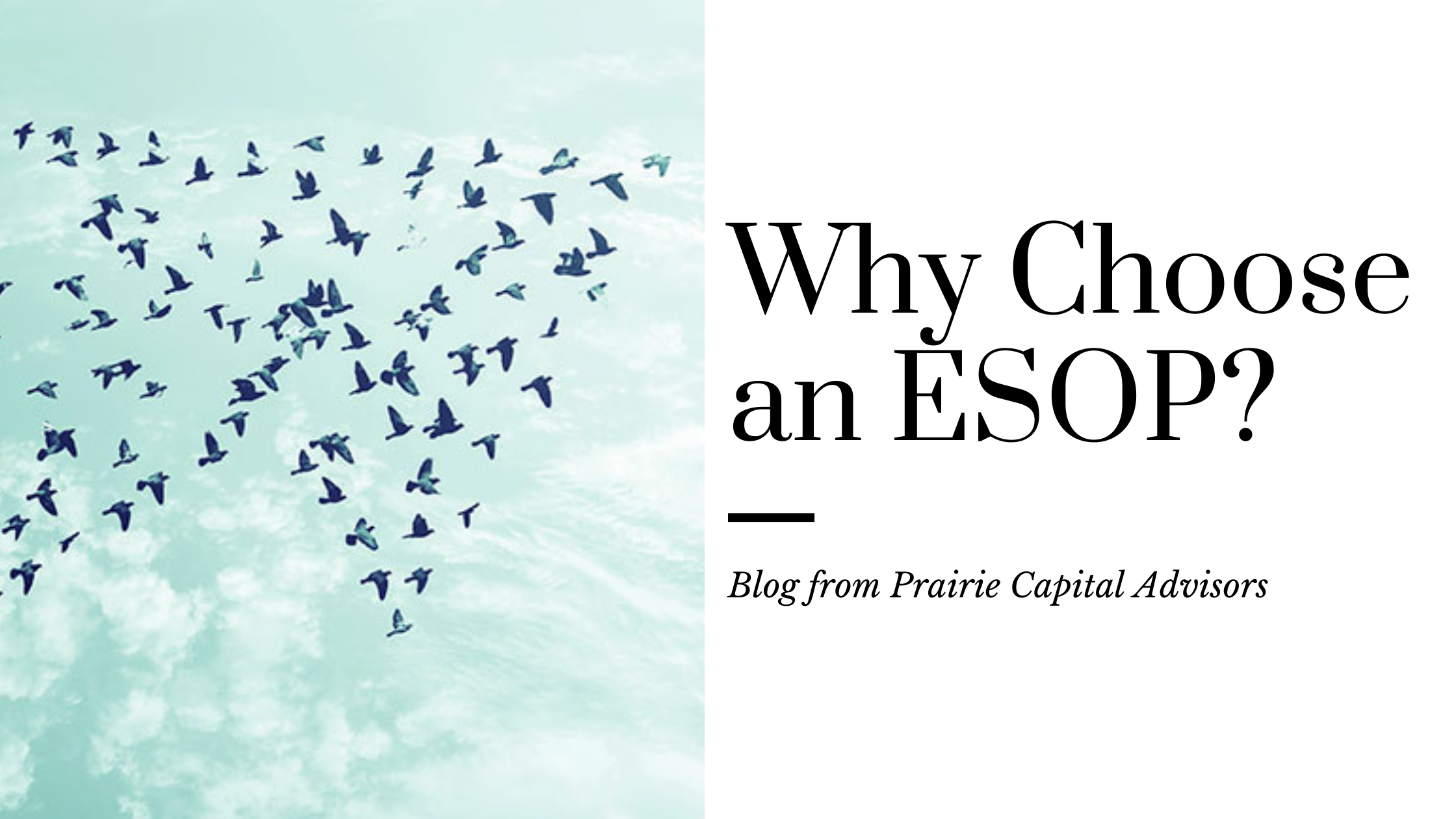 Why Choose an ESOP?