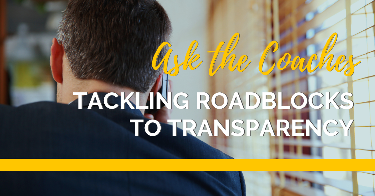 Roadblocks to transparency-sized (3)